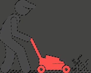 Yard clean-up